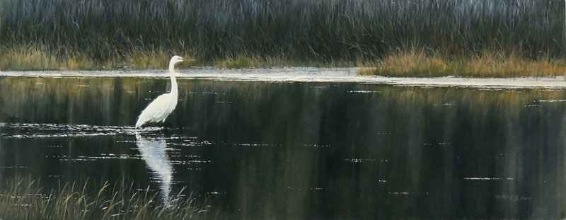 Great Egret by  Morten E. Solberg - Masterpiece Online