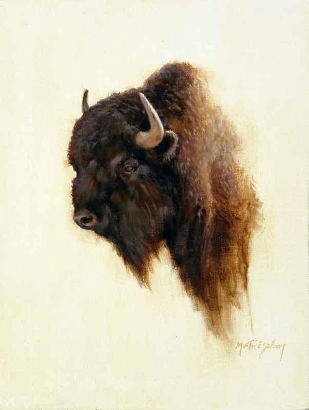 Buffalo Head Study by  Morten E. Solberg - Masterpiece Online
