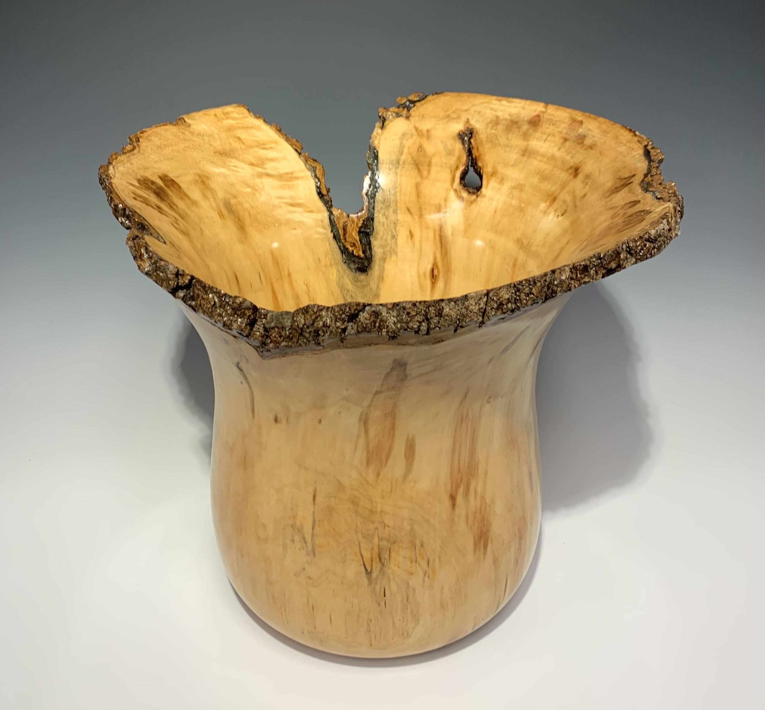 Gnarled Amphora by  Greg Biel - Masterpiece Online