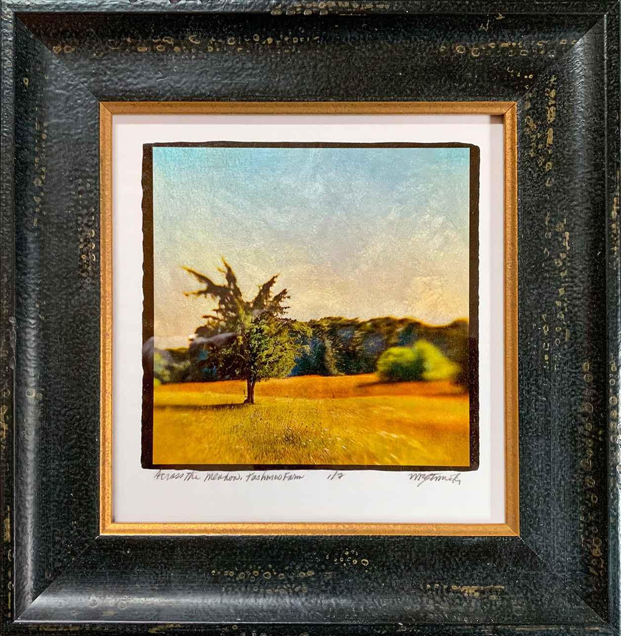 Across the Meadow, Ta... by  Michael Stimola - Masterpiece Online