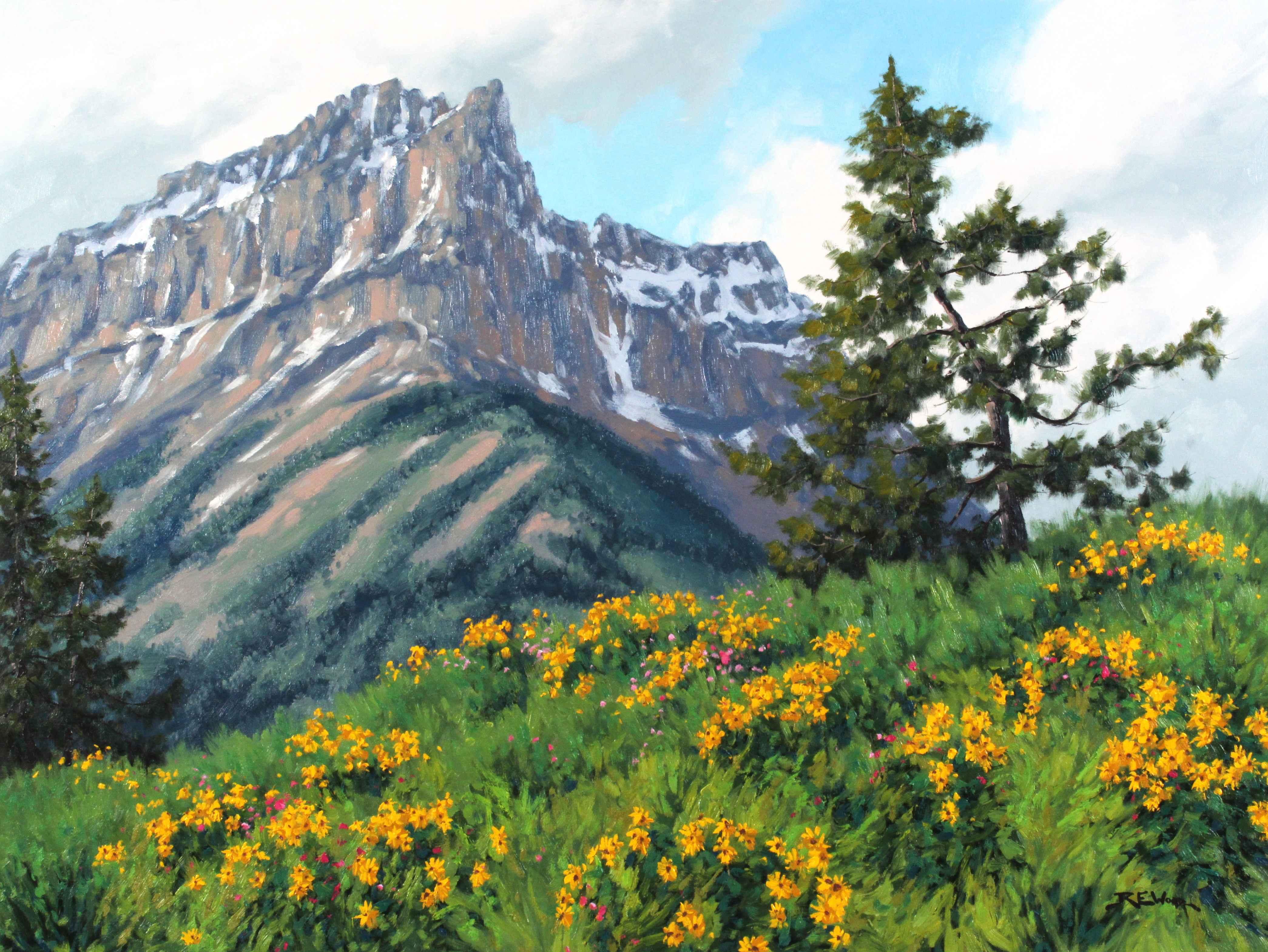 Anderson Peak Waterton