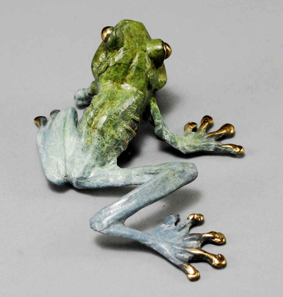 Frog B  by  Dan Chen