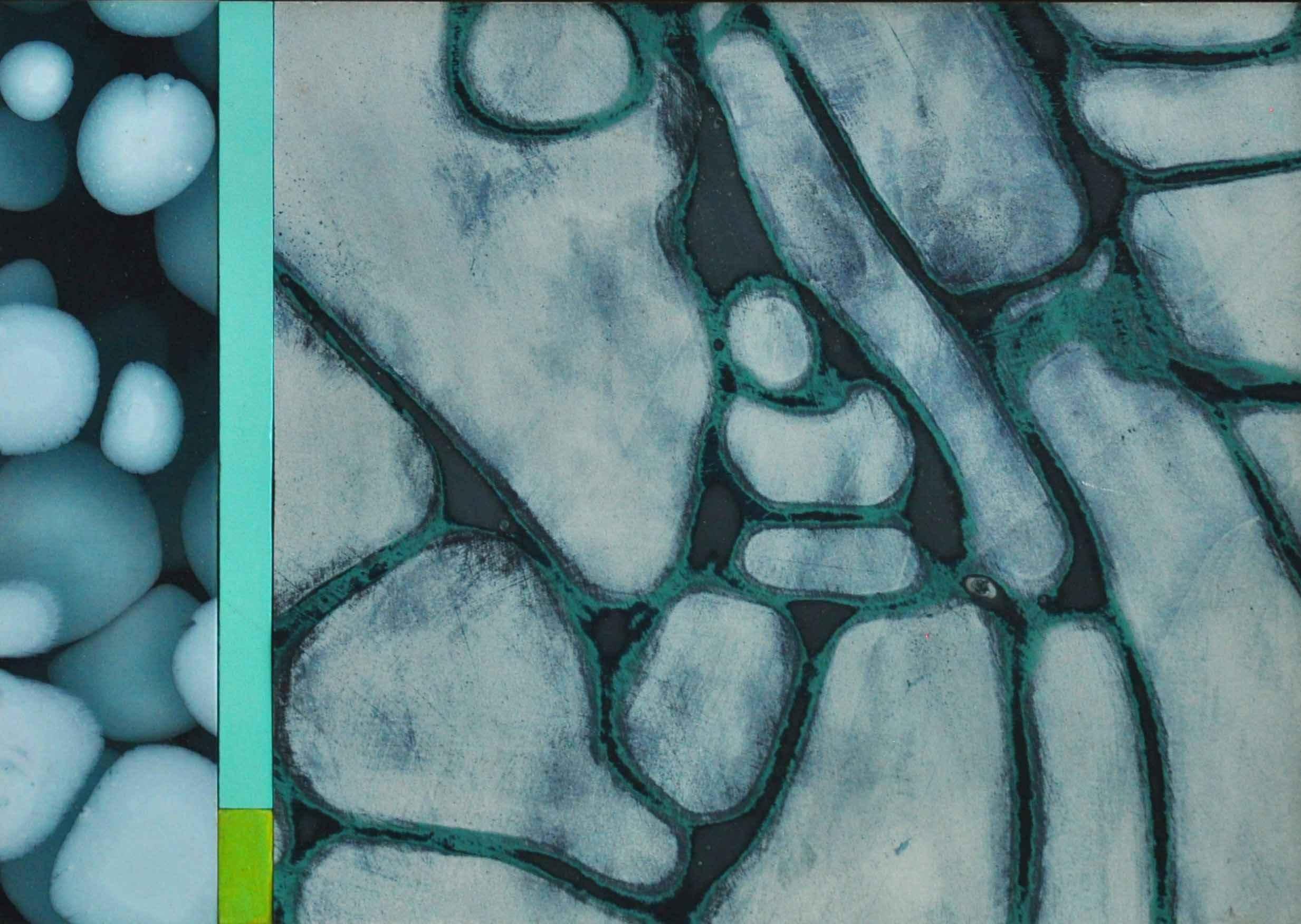 Shallows by  Susie White - Masterpiece Online