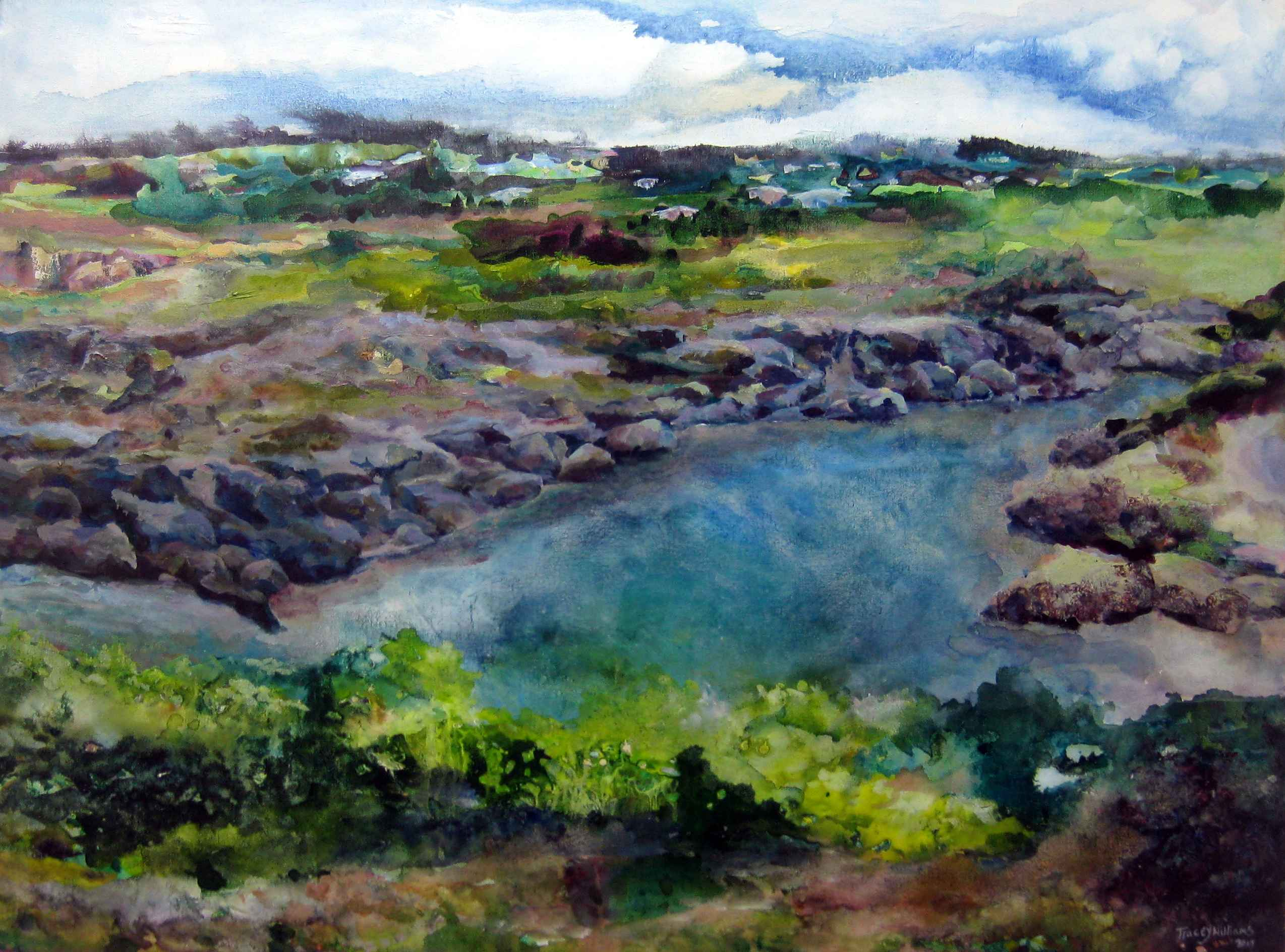River Bay St Lucy by Ms. Tracey Williams - Masterpiece Online
