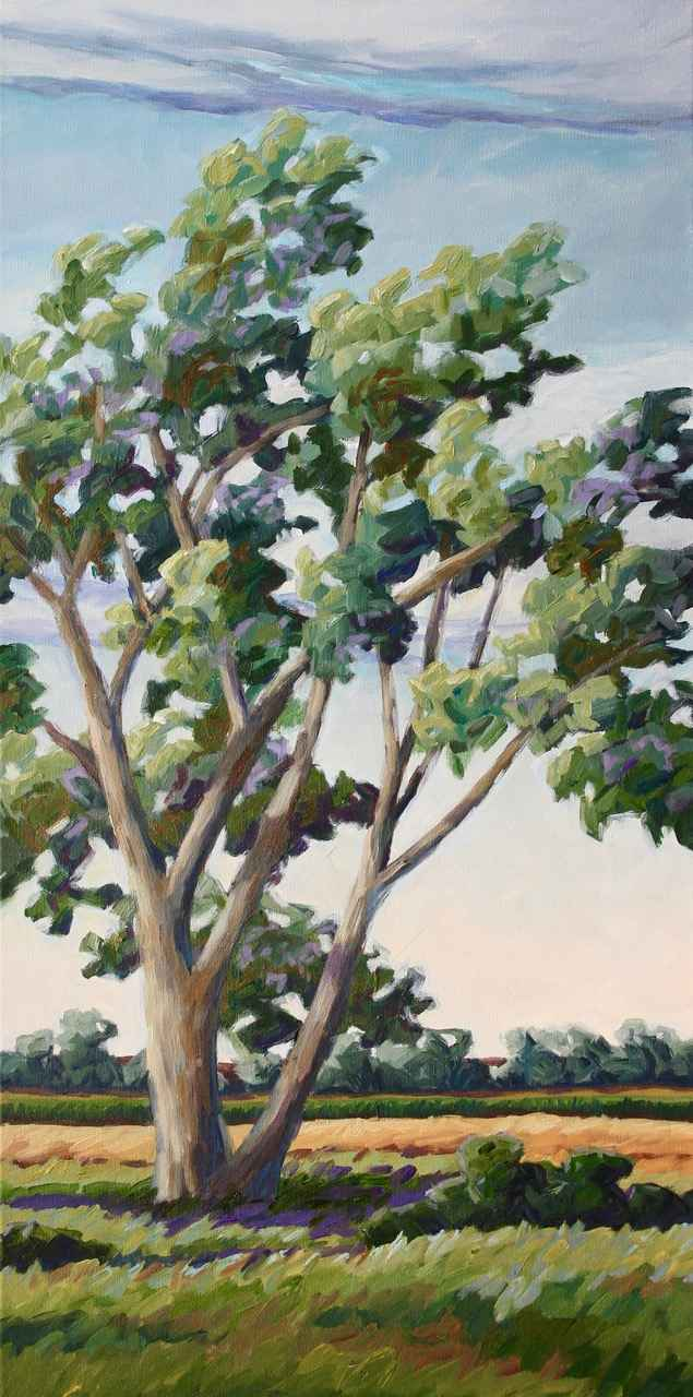 Dickerson's Cottonwood by  Kristin Goering - Masterpiece Online