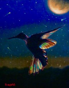 Jewel of a Hummingbird