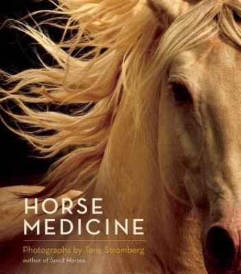 Horse Medicine by  Tony Stromberg - Masterpiece Online