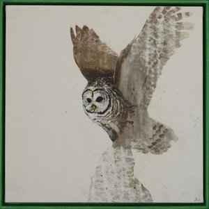 Earth Birds Barn Owl by  Daniel St-Amant - Masterpiece Online