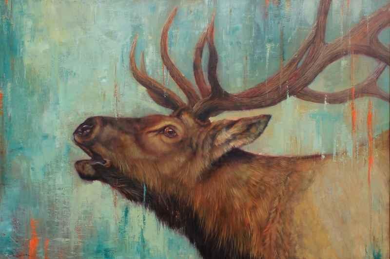 Elk Song  by  Lucia Heffernan