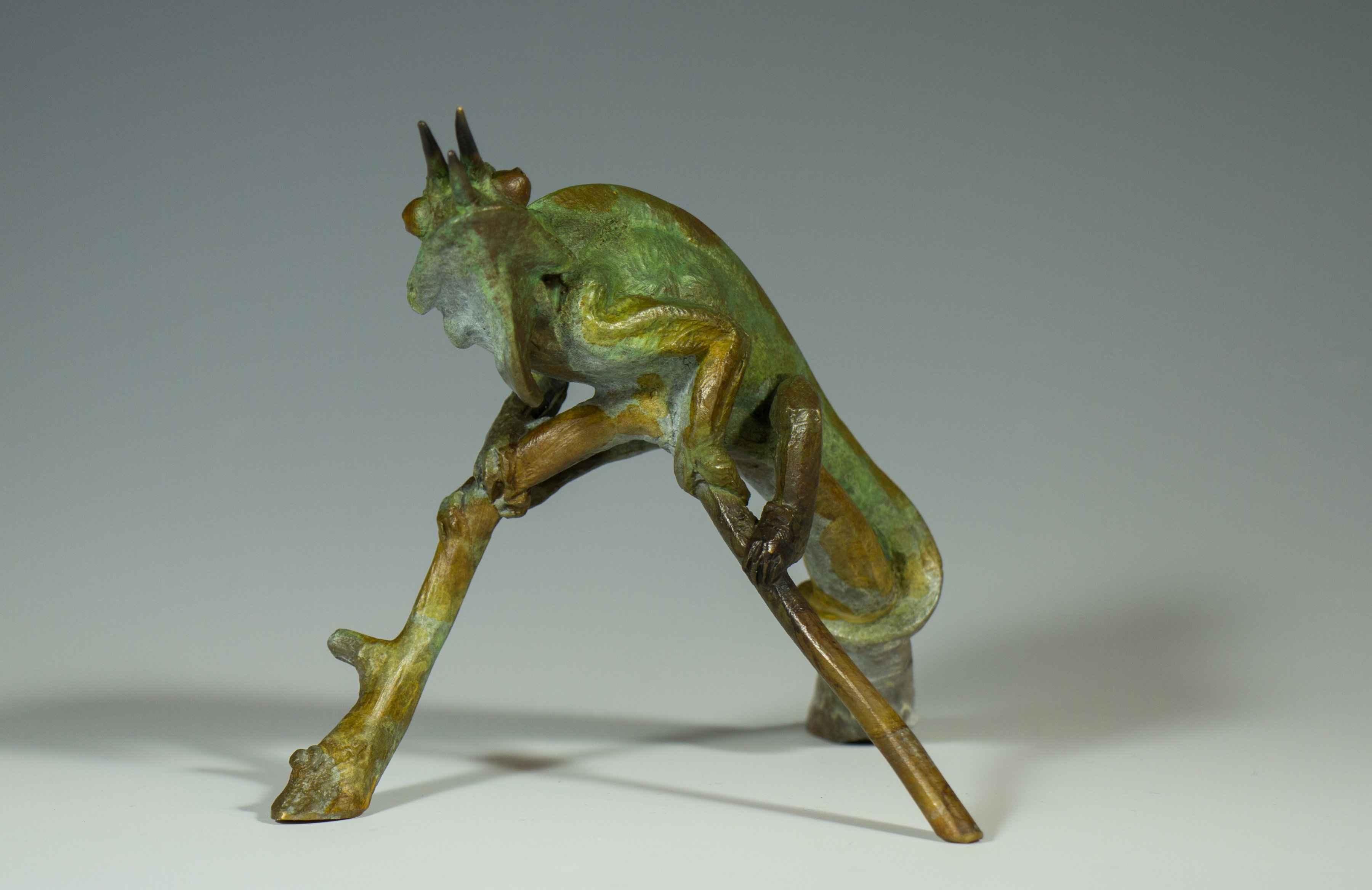 Chameleon Lizard  by  Dan Chen
