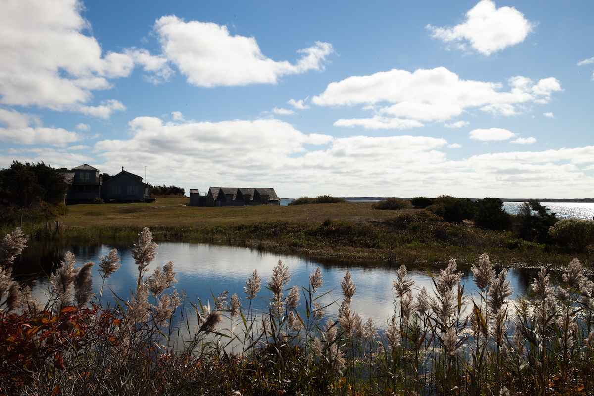 Cape Pogue, (Don & Ji... by  Melinda Fager - Masterpiece Online