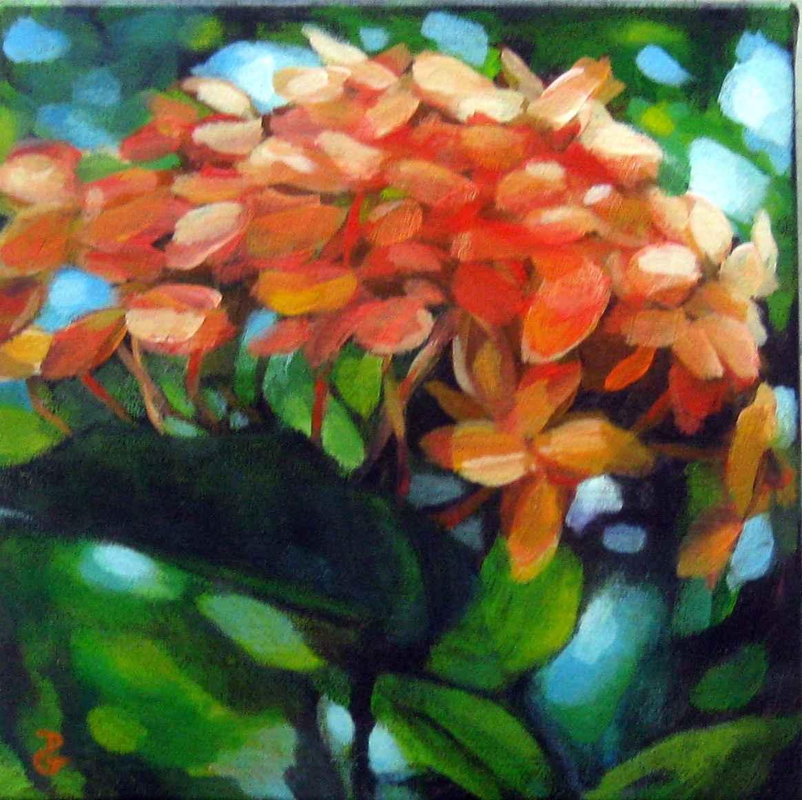Orange Ixora by  Donna Grandin - Masterpiece Online