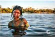 Xingu 3/30