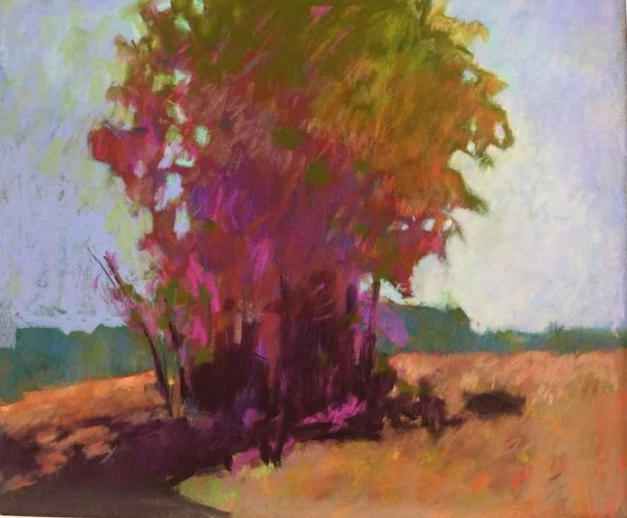 Shade by  Julie Friedman - Masterpiece Online
