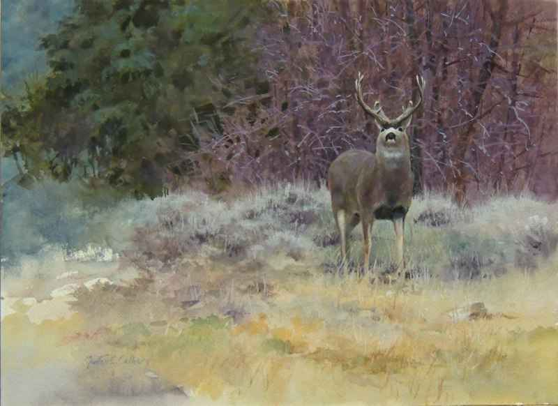 Cold Morning Champion by  Morten E. Solberg - Masterpiece Online