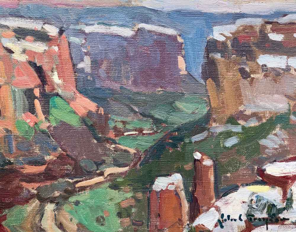 Spider Rock View, Can...  by  John C Traynor