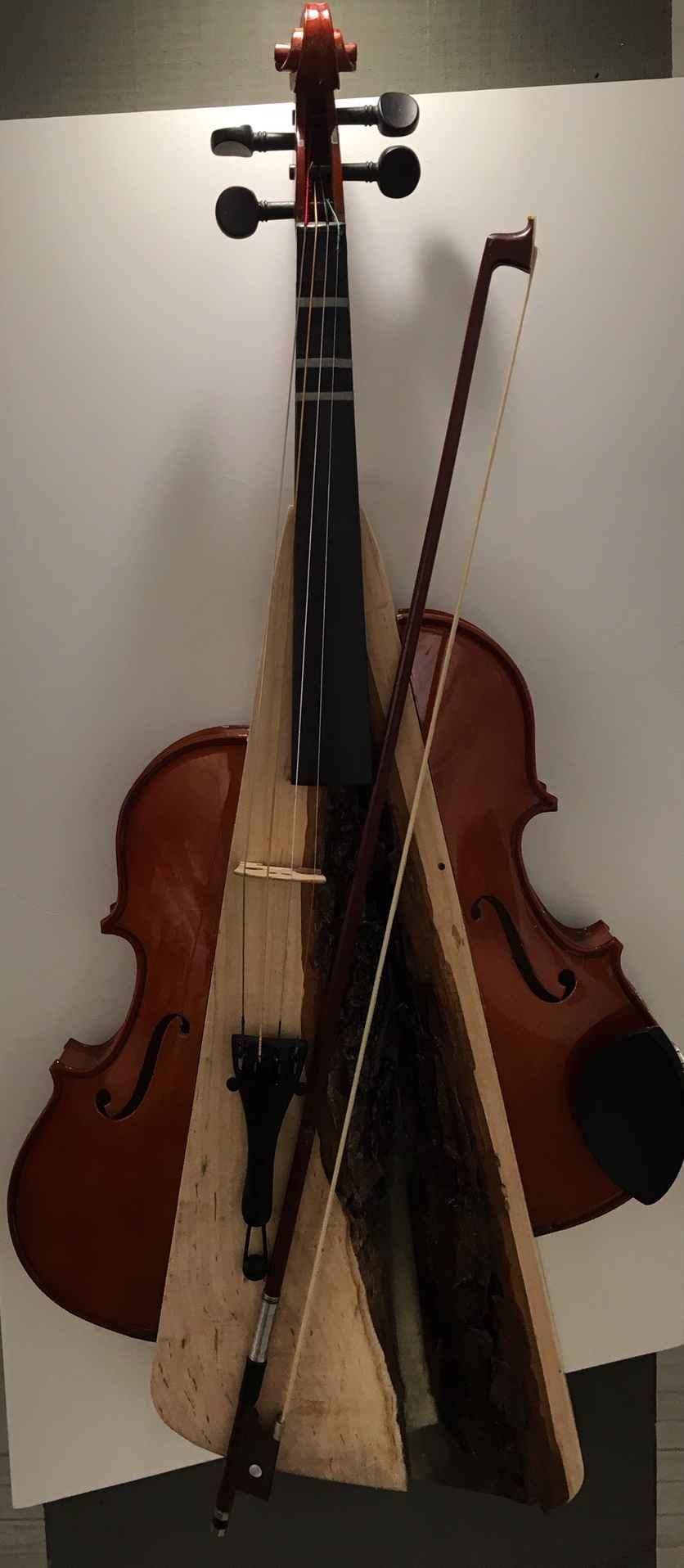 Live Edge Resin Violin by  Hans Veenvliet - Masterpiece Online
