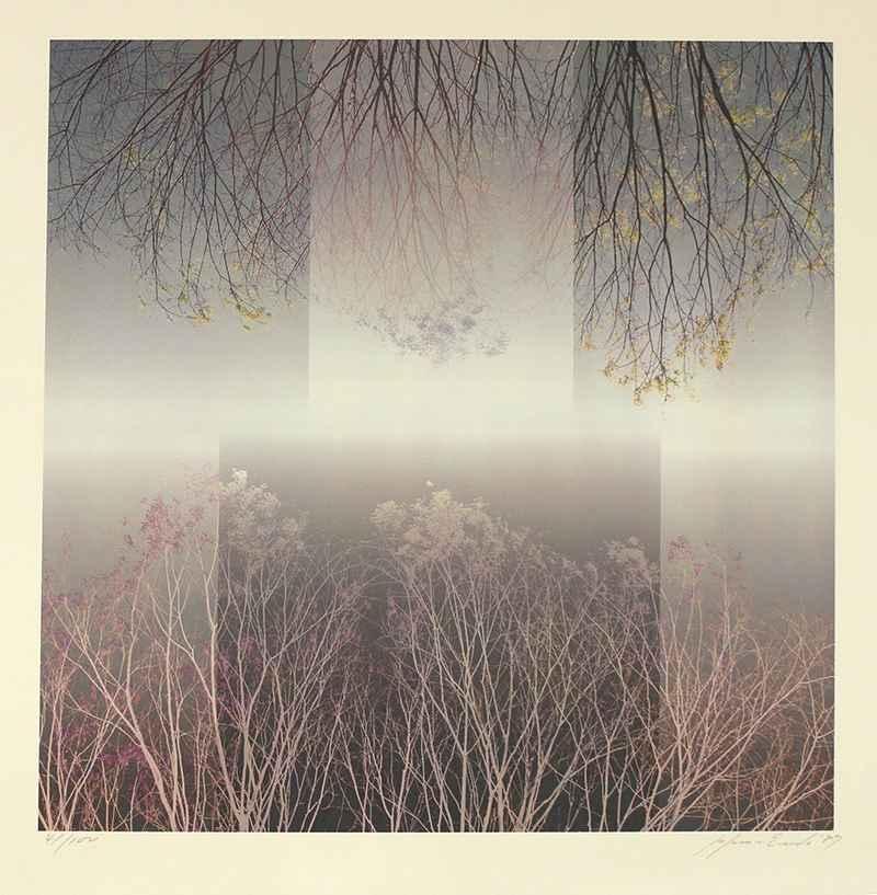 Branch by  Susumu Endo - Masterpiece Online