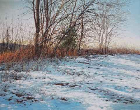 Tangled Brush, Edge o...  by  Michael Wheeler