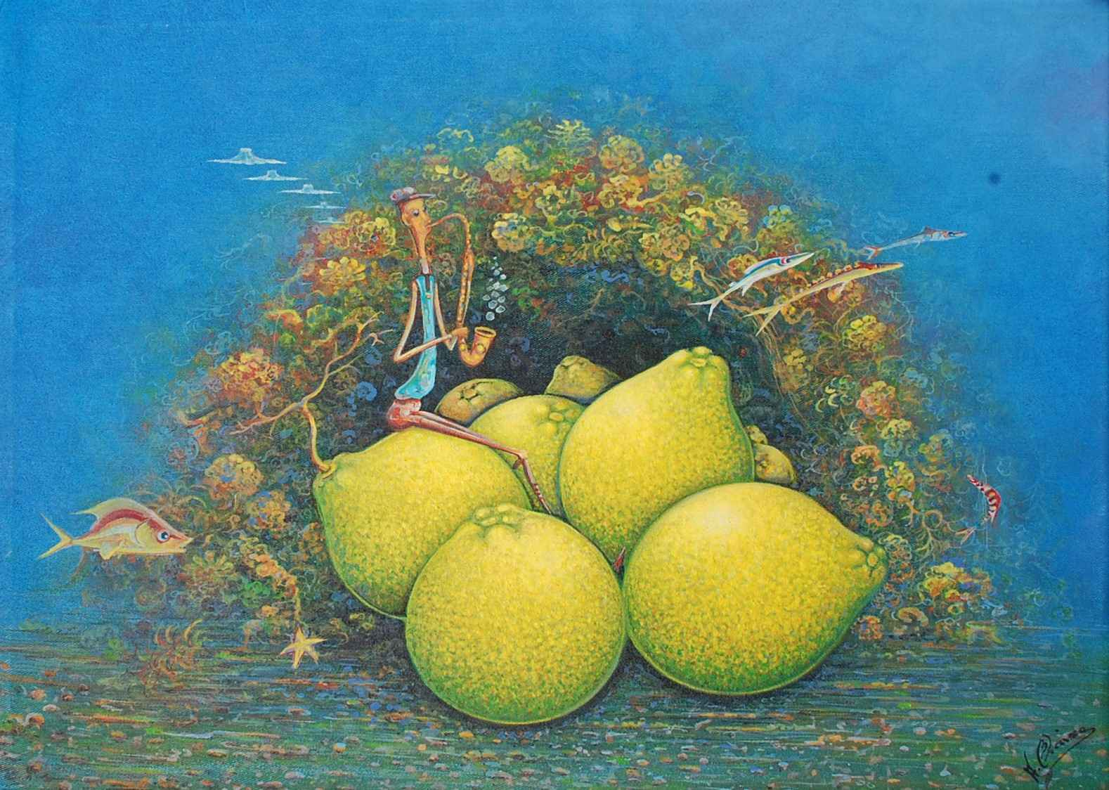 Grapefruits represented  by  Andre BLAISE