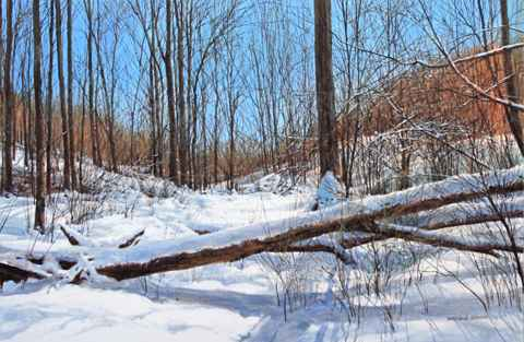 Two Trees Down - Janu... by  Michael Wheeler - Masterpiece Online