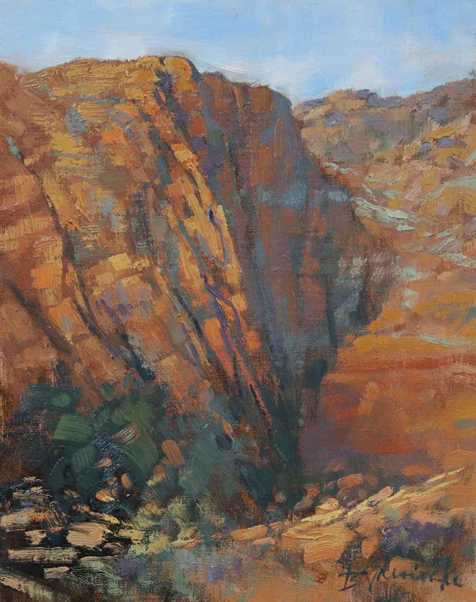 Snow Canyon Zigzags  by  Barbara Jaenicke