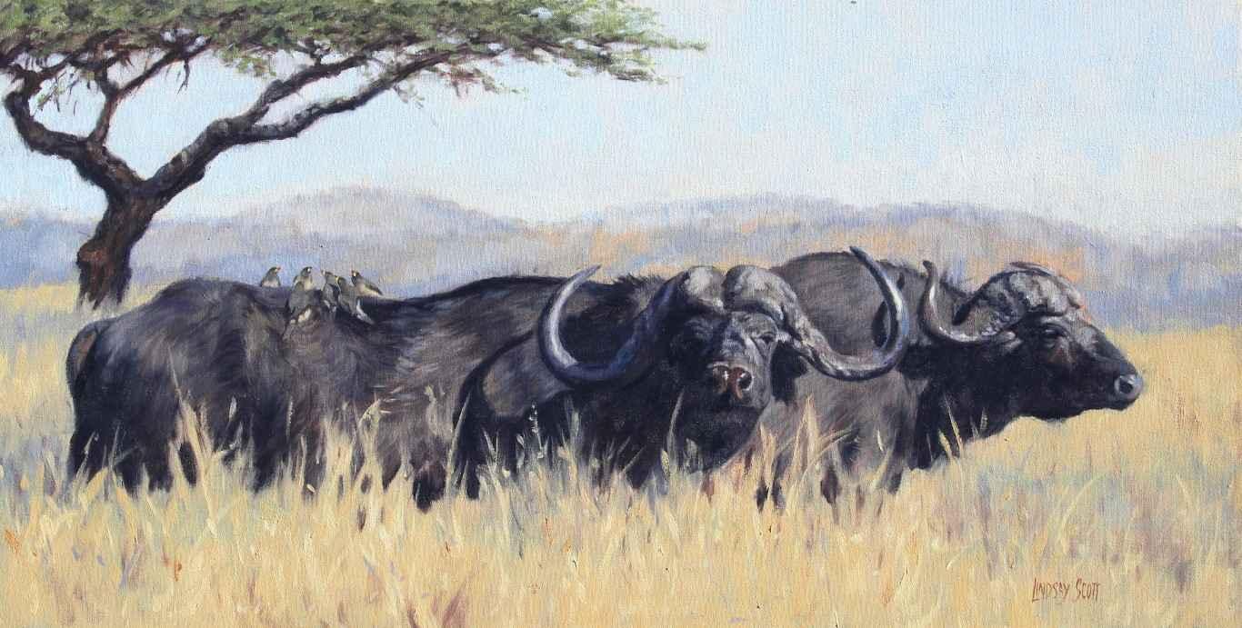 Ndaba by  Lindsay Scott - Masterpiece Online