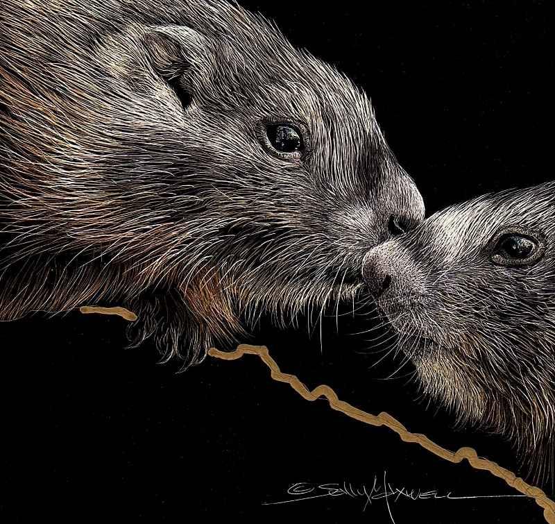 Kissing Ground Hogs