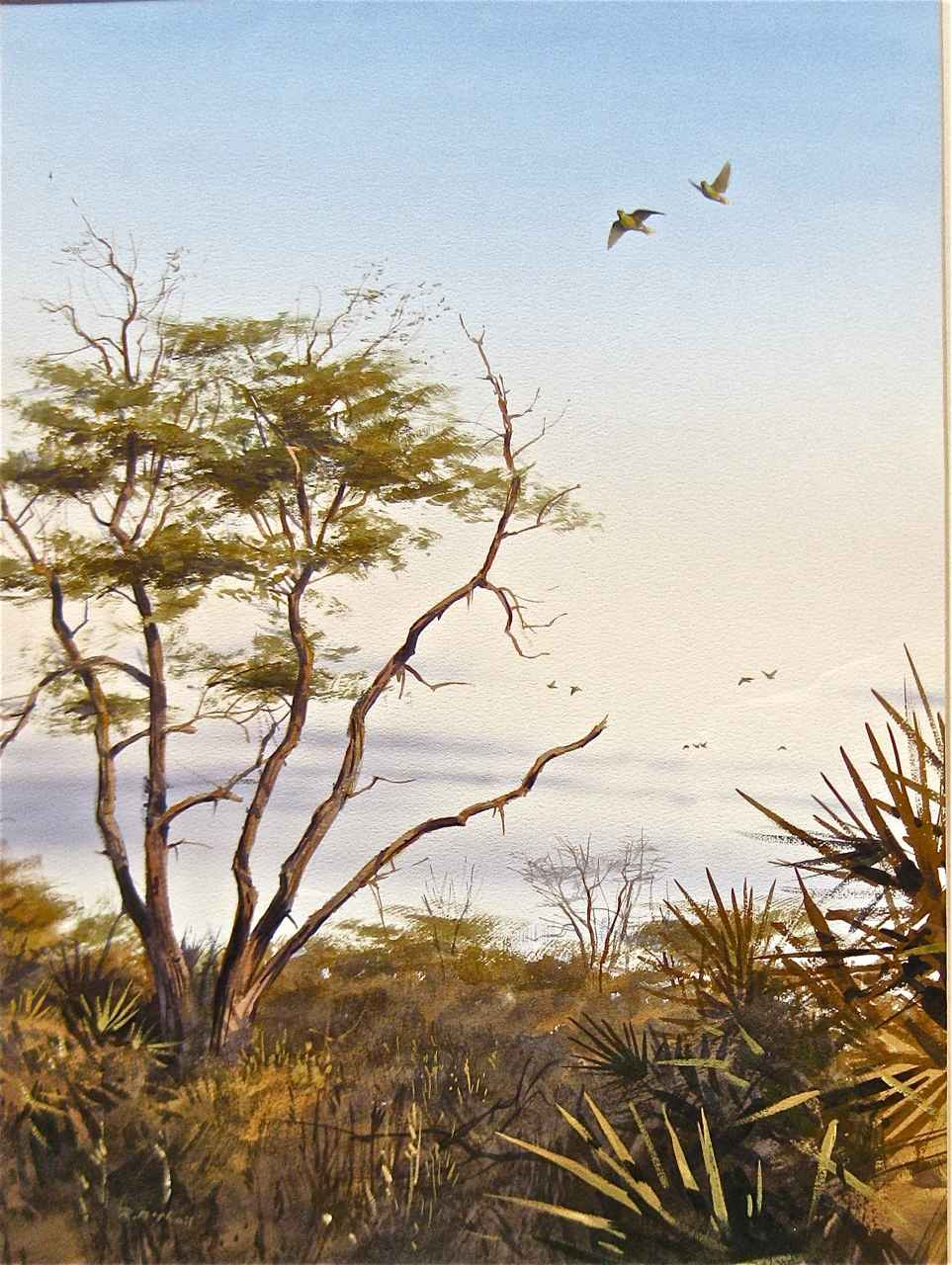 Green Pigeons by  Rodger McPhail - Masterpiece Online