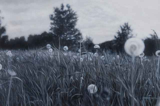 After the Dandelion B... by  Gabriel Tempesta - Masterpiece Online