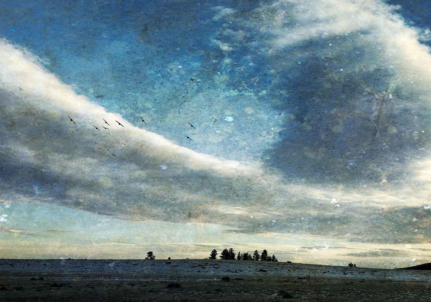 Moody Blue Road by  Sharon Hammesfahr - Masterpiece Online