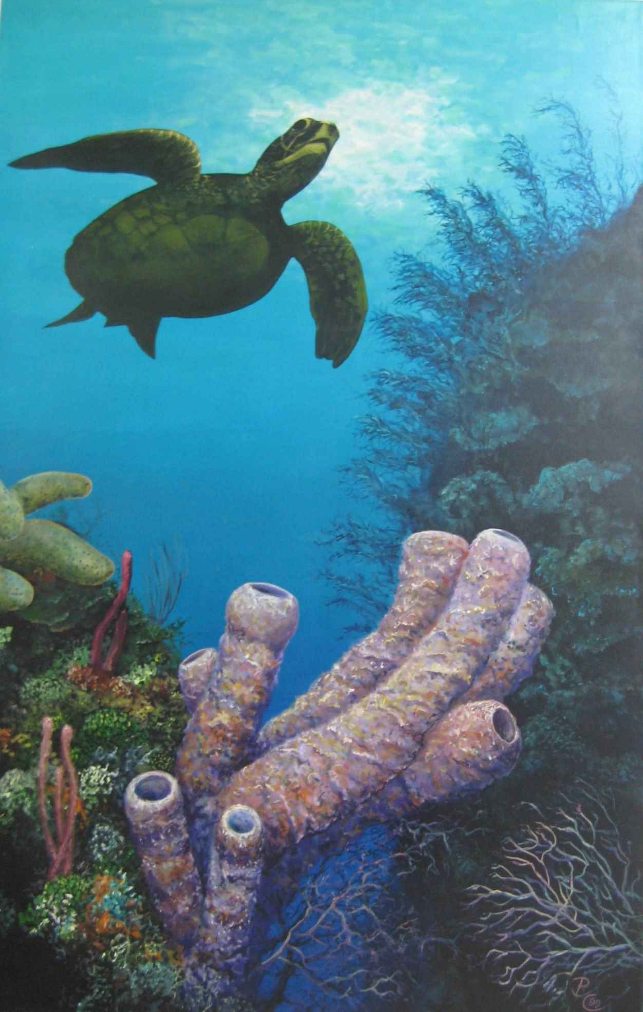 361 Turtle and Sponges by Mr. Patrick Chevailler - Masterpiece Online