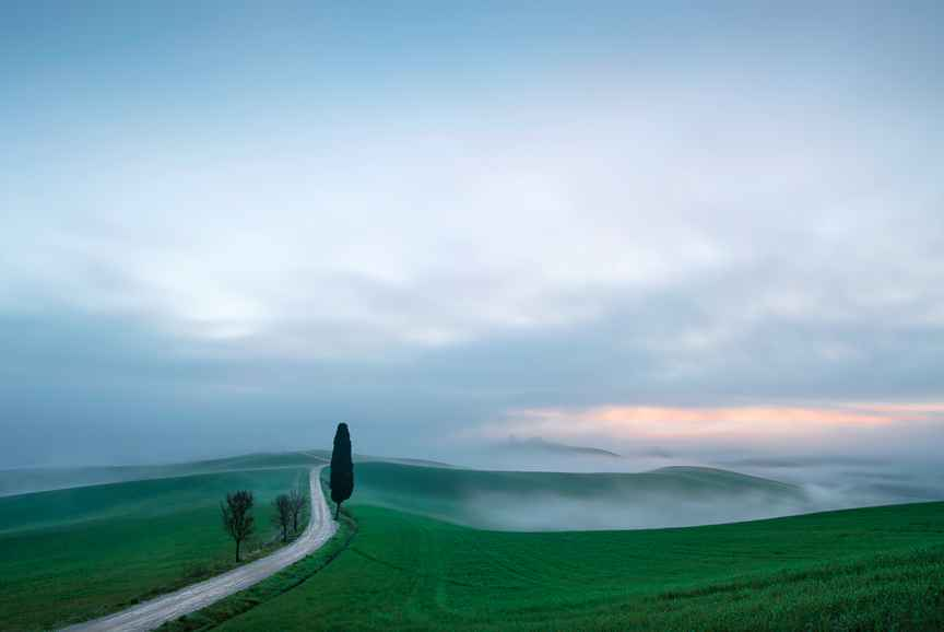 Tuscany 2018 R3 by  Alison Shaw - Masterpiece Online