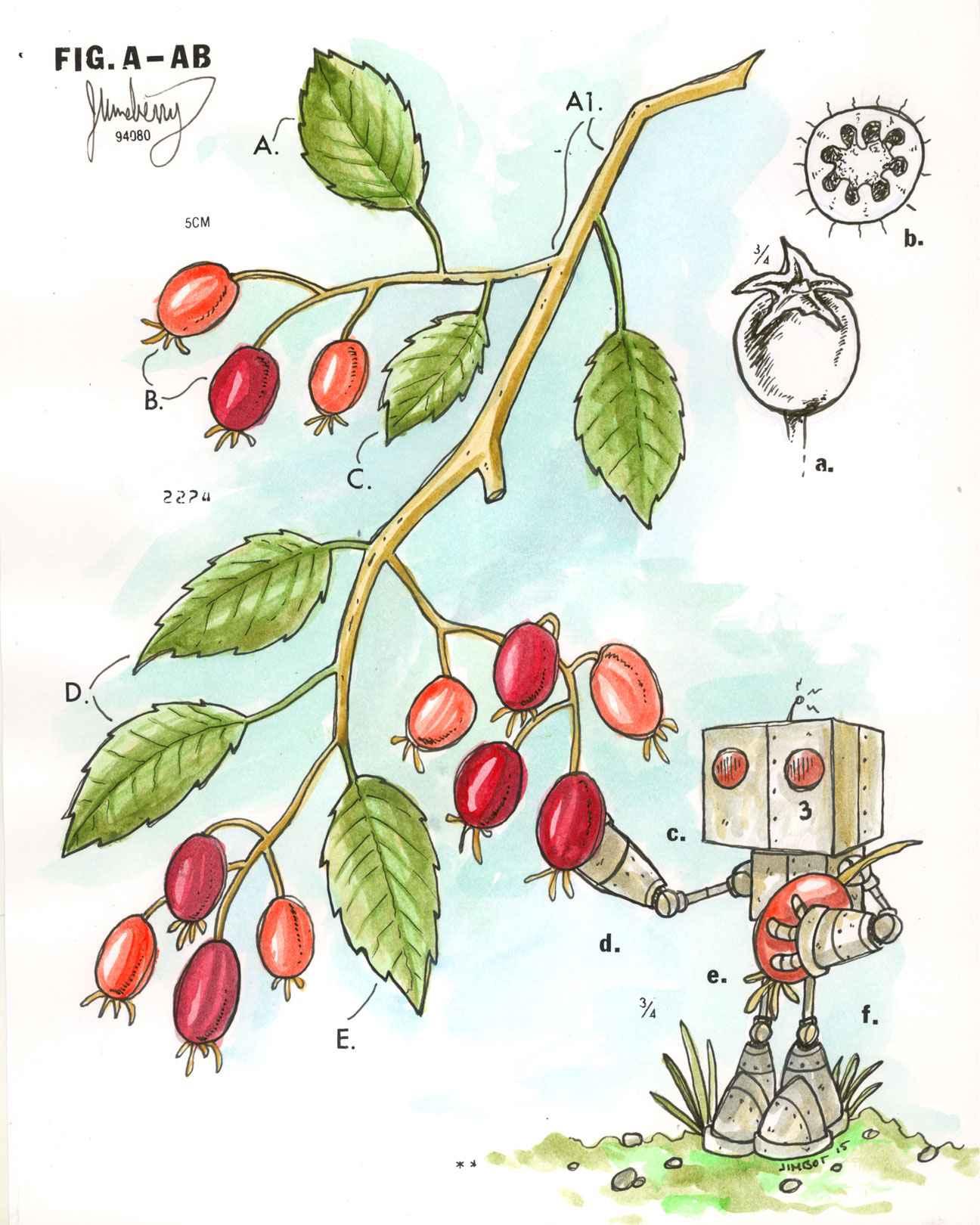 Juneberry by  James Demski - Masterpiece Online
