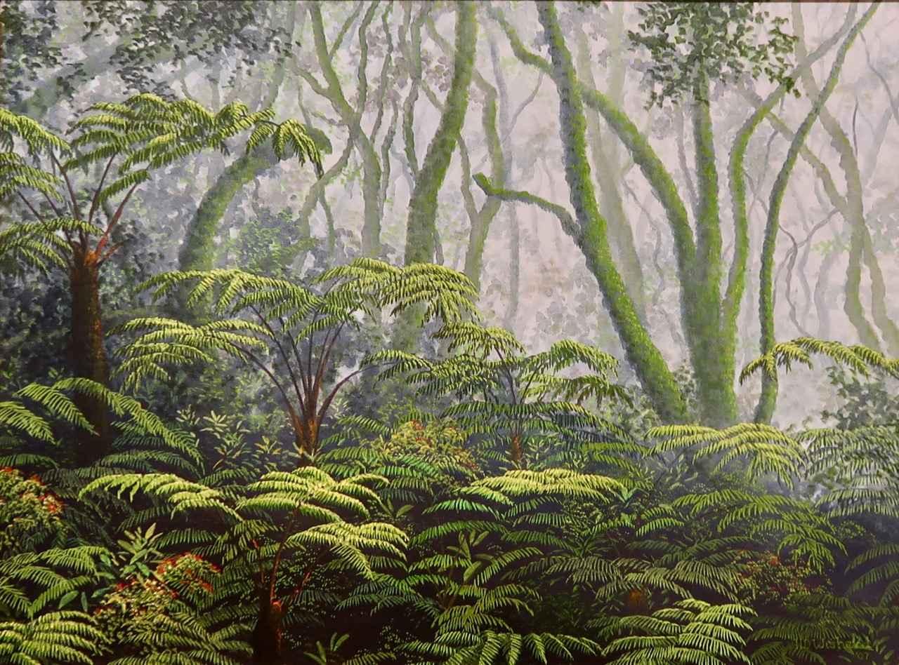 Volcano Rainforest by Mr. Harry Wishard - Masterpiece Online
