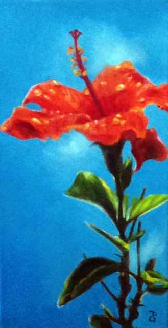 Sunny Red Hibiscus by  Donna Grandin - Masterpiece Online