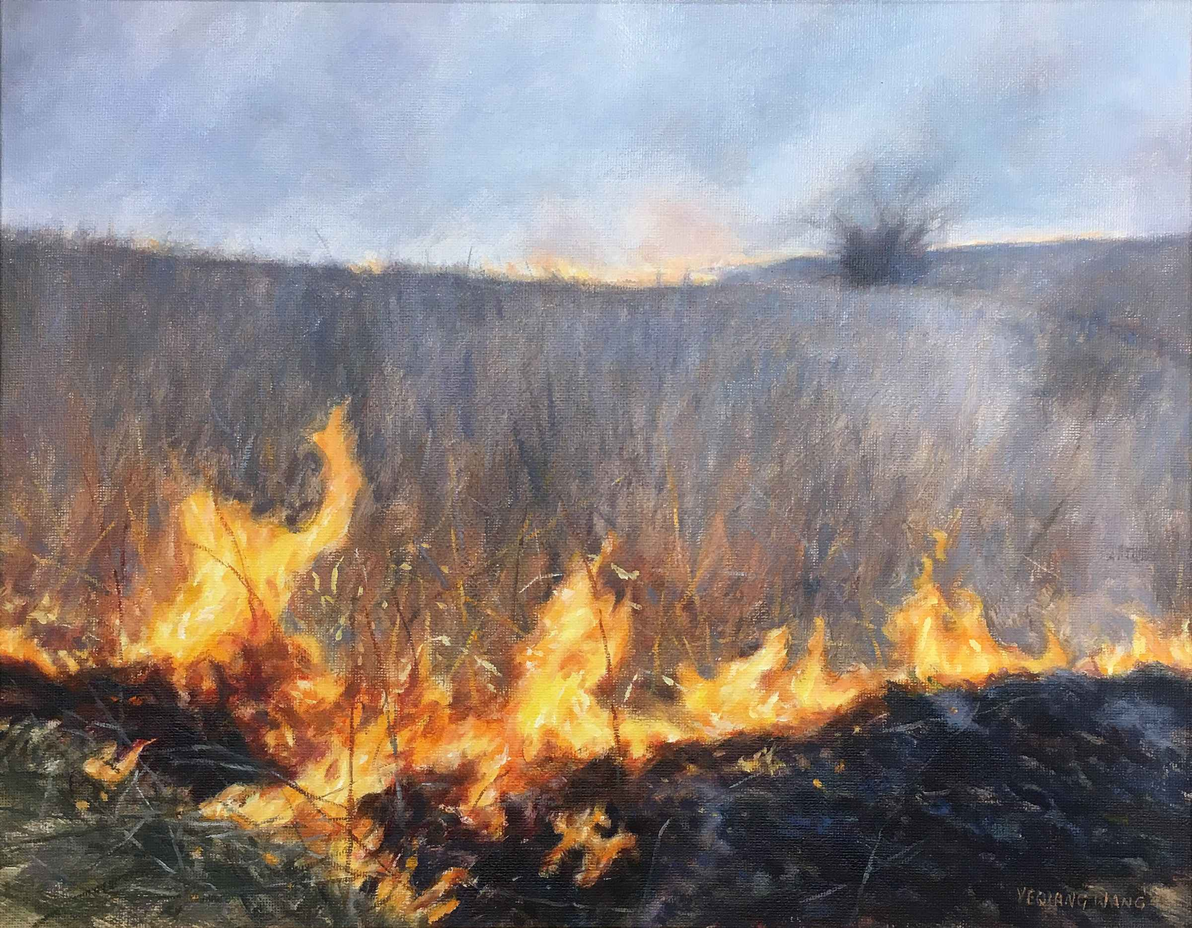 Burn Season  by  Ye Wang