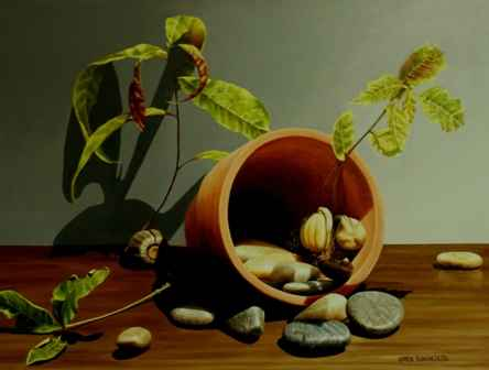 Sapling and Rocks by  Loren DiBenedetto - Masterpiece Online