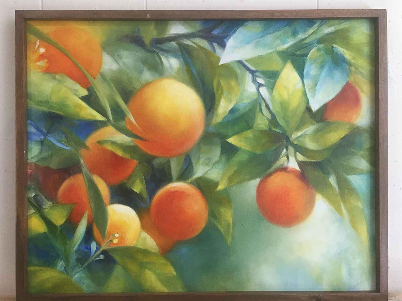 Oranges  by  Maya Santangelo