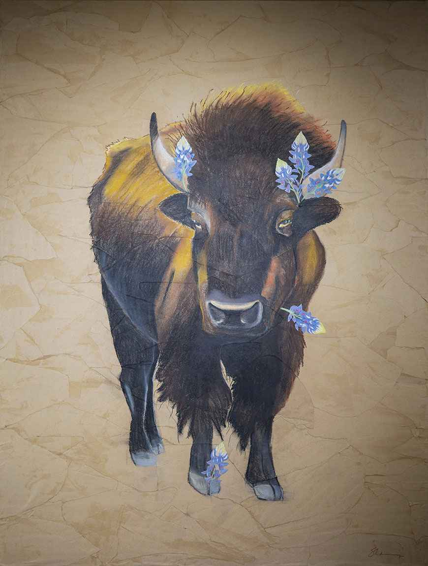 This Bison's Got the Blues by Shanny Lott