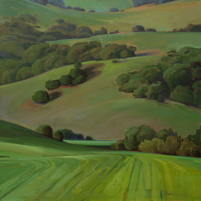 Winters Fields  by  Samantha Buller
