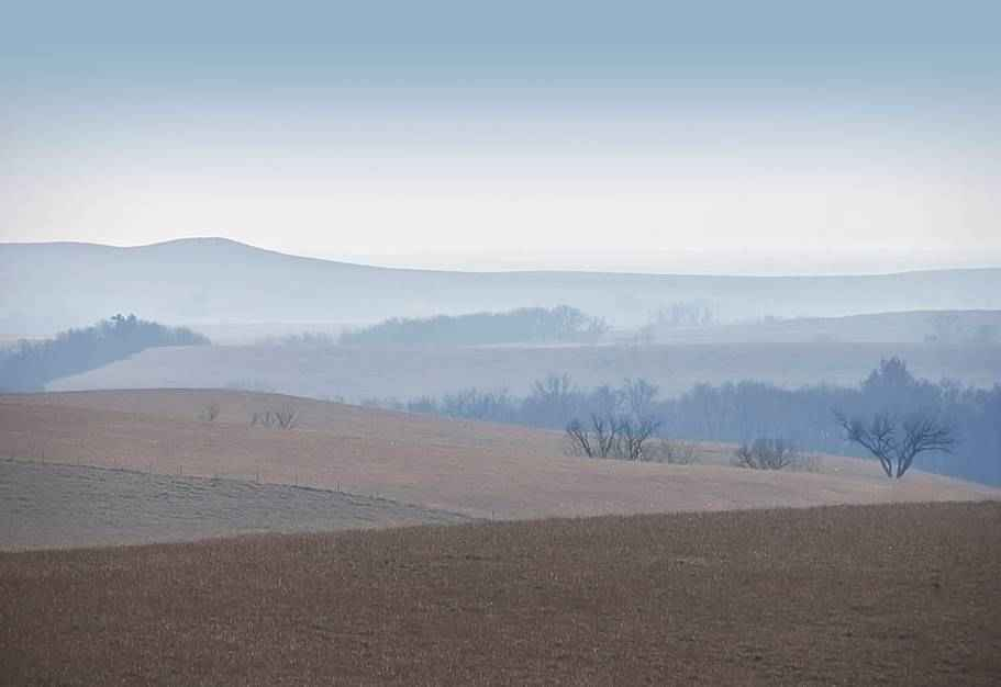 Autumn Fog by  Betsy Forcade - Masterpiece Online
