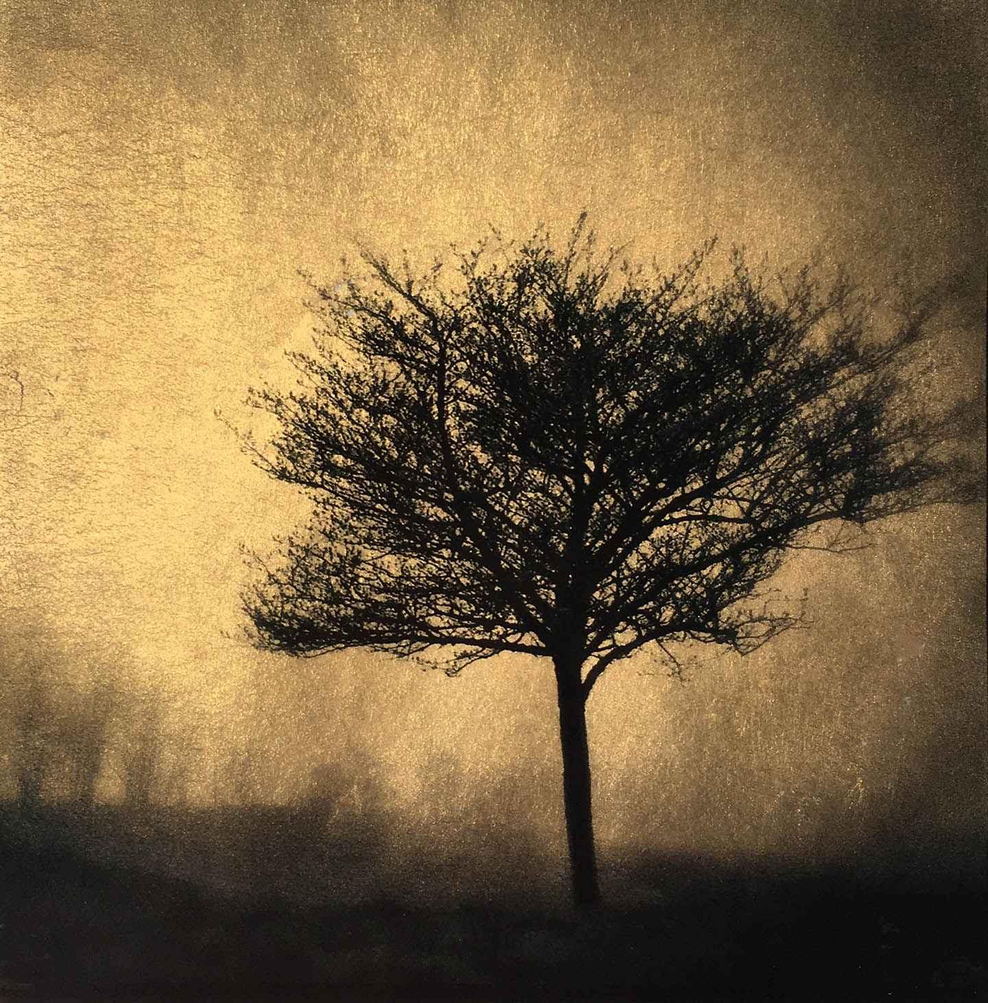 Spring Fog by  Vicki Reed - Masterpiece Online