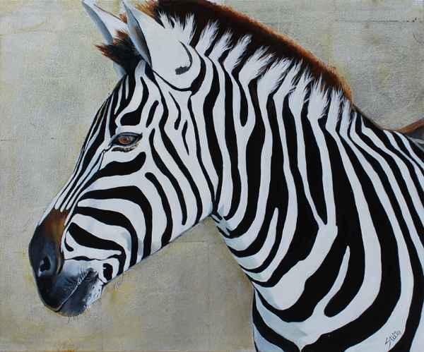 The Beauty of Zebra  by  Thomas Stiltz