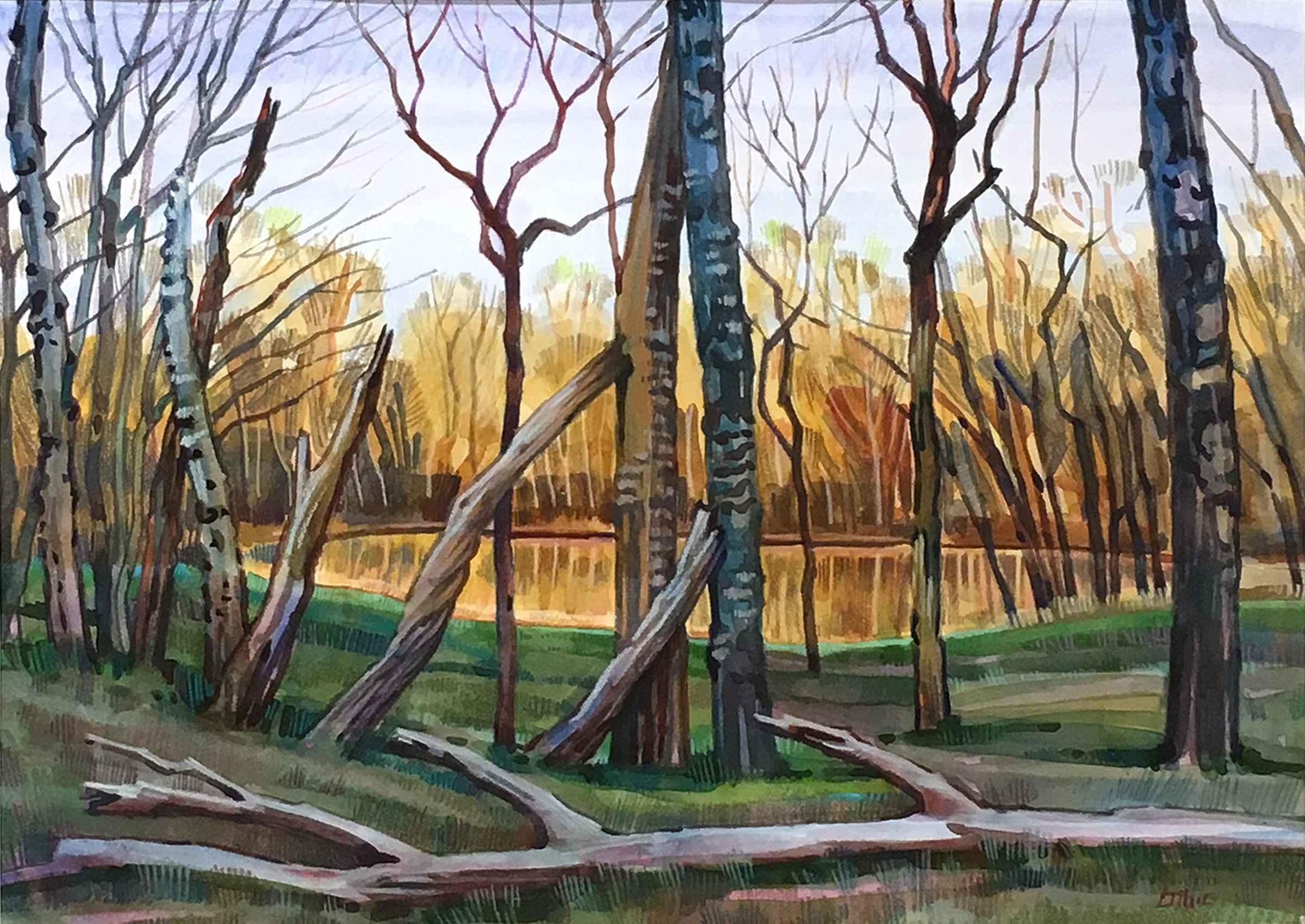 Dead Trees, Duck Lake