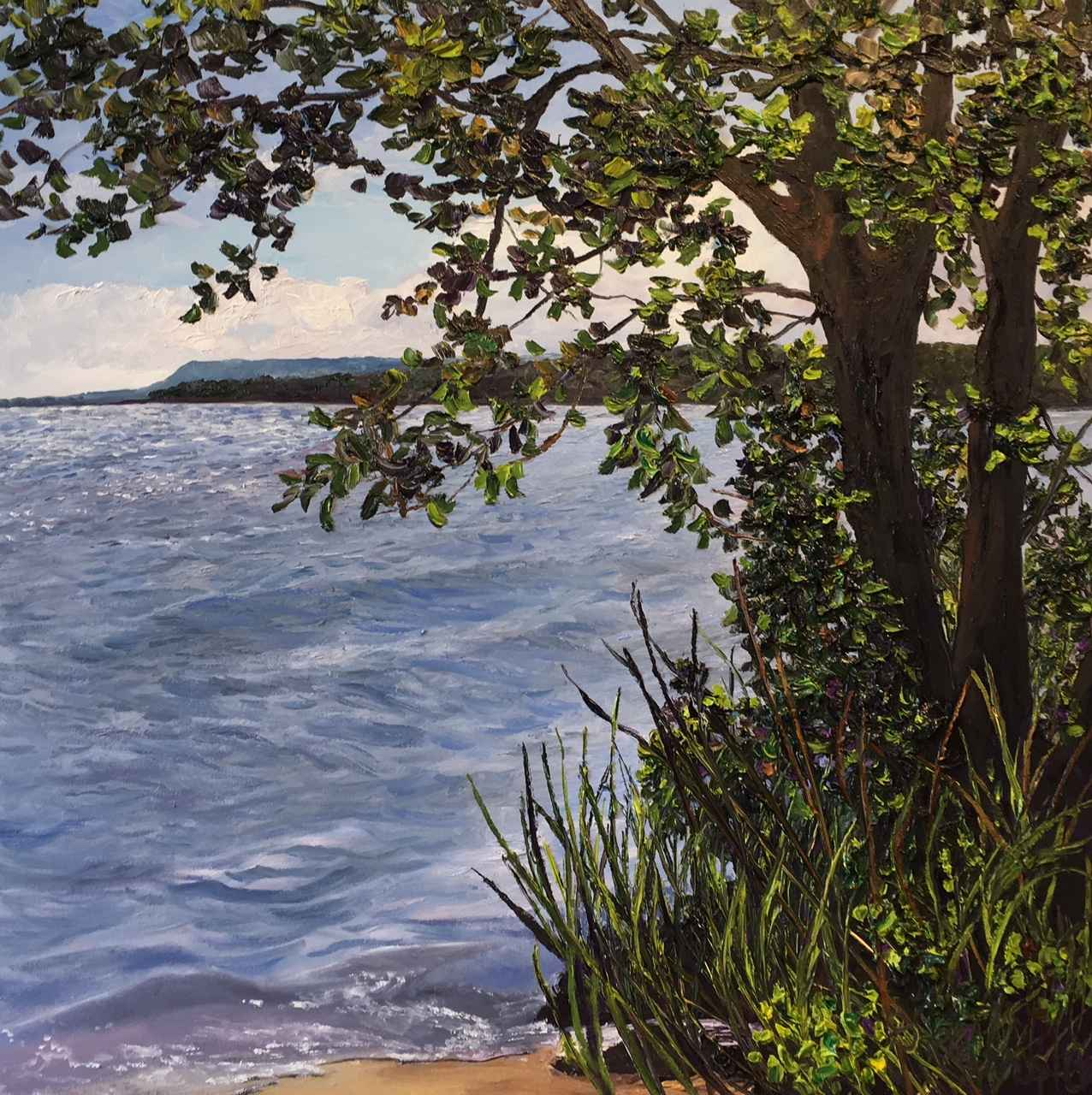 Lapping the Shore by Ms Debra Lynn Carroll - Masterpiece Online