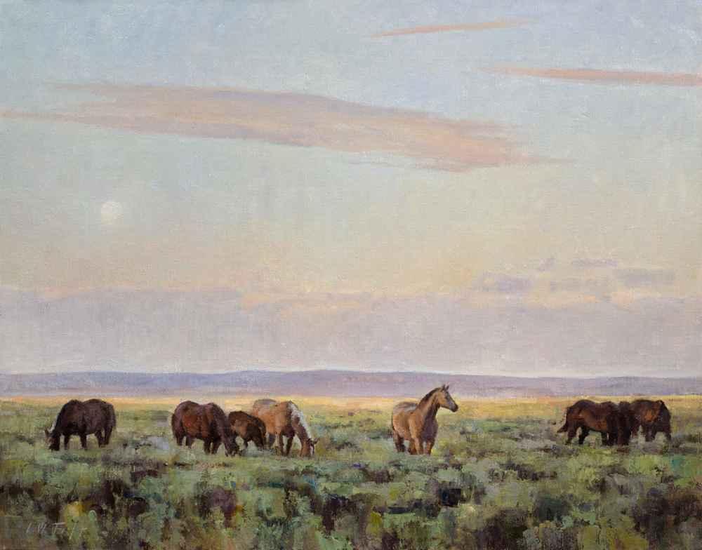 Sage Horses  by  John W Taft