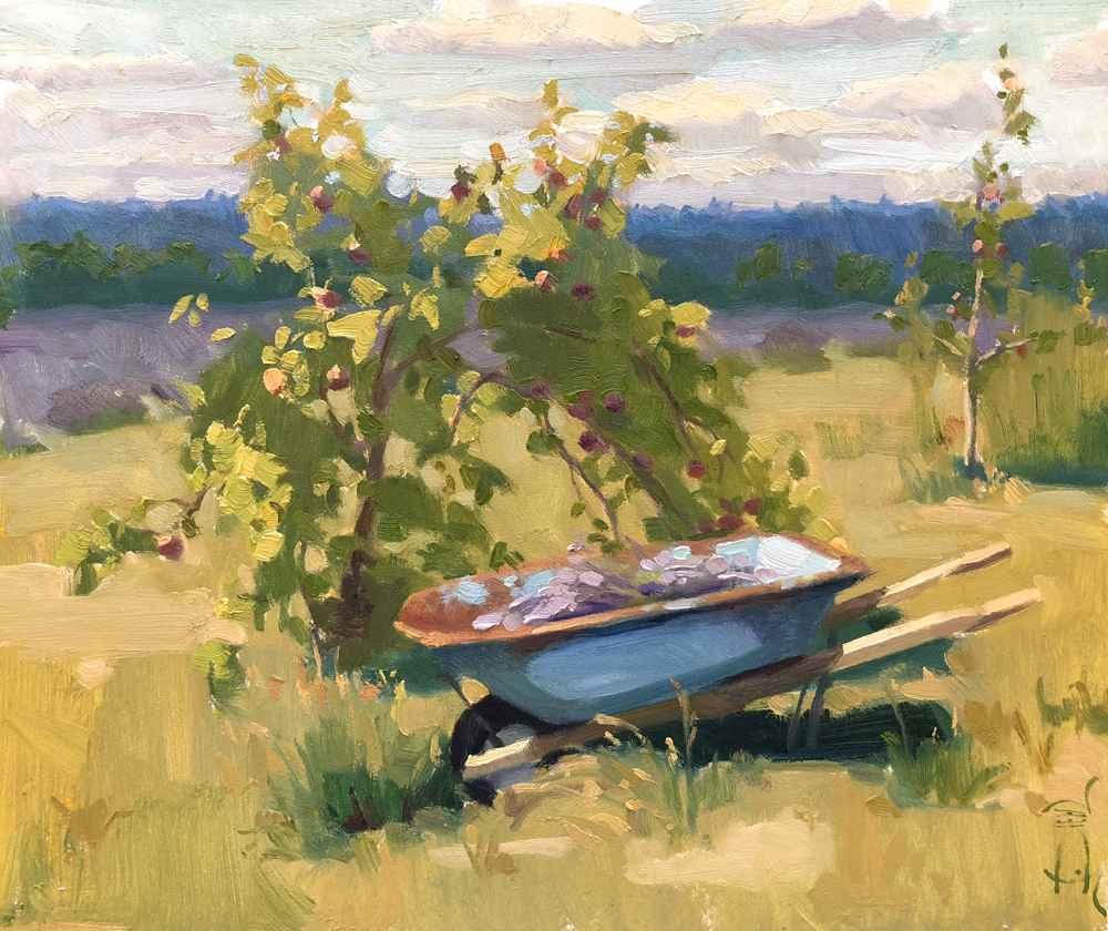 Wheelbarrow Harvest  by  Jennifer Diehl
