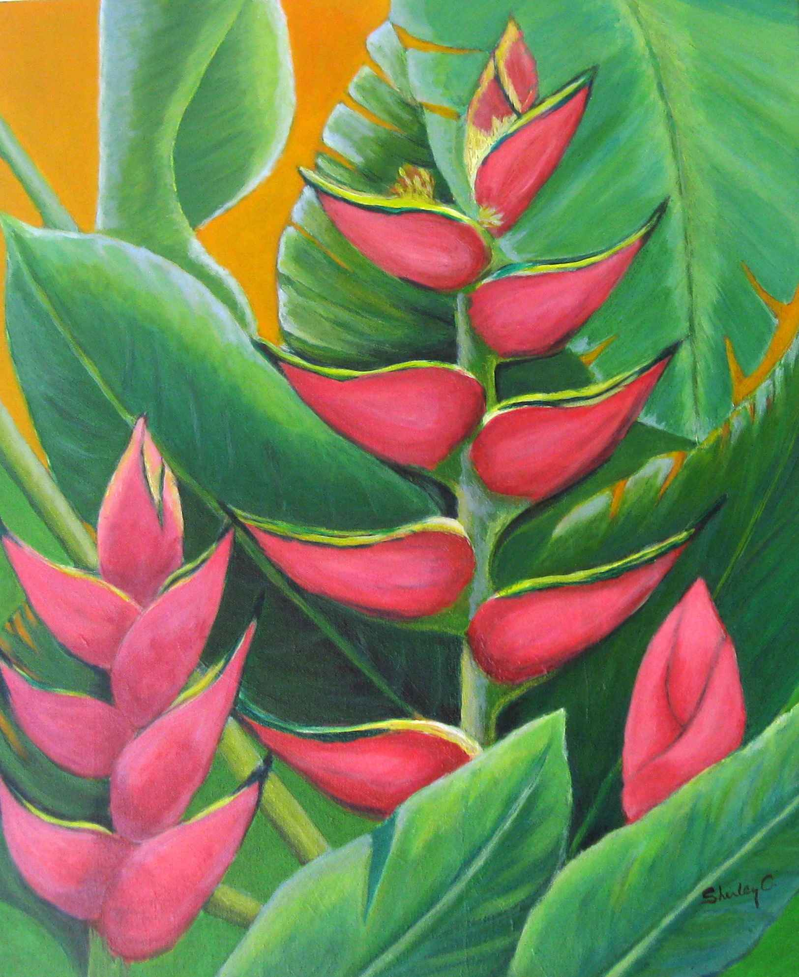 Heliconia by  Shirley Chaderton - Masterpiece Online
